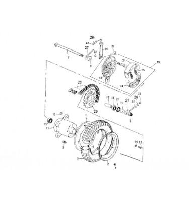 N°29 - Couronne de transmission - 125cc - Euro 3