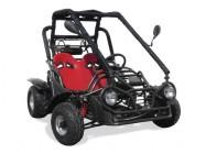 Buggy XT 110 - Noir
